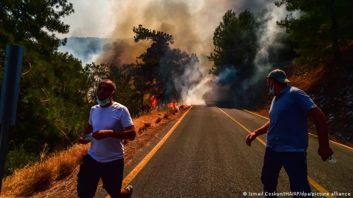 Горещини и пожари в България, Турция, Гърция и Италия   Новини и анализи от  Европа   DW   02.08.2021